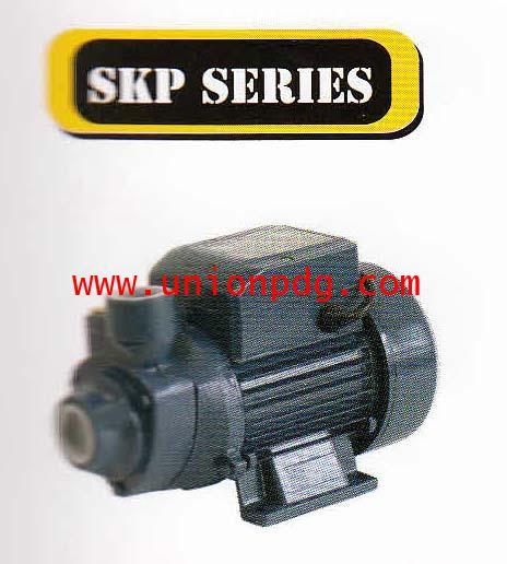 ปั๊มน้ำหอยโข่งใบพัดทองเหลือง 1 นิ้ว 0.5 แรงม้า SMILE/SKP series