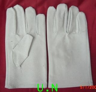 ถุงมืออาร์กอน