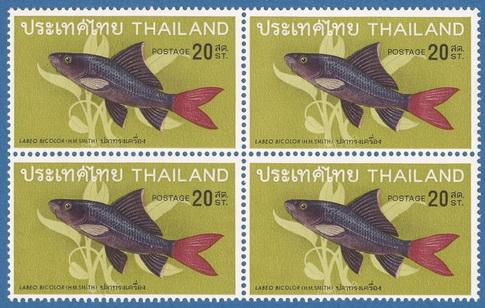 แสตมป์ชุดปลาไทยชุดที่ 2 ปี พ.ศ. 2511 ดวงราคา 20  สต.ปลาทรงเครื่อง บล็อกสี่ ขาวมาก