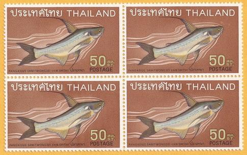 แสตมป์ชุดปลาไทยชุดที่ 2 ปี พ.ศ. 2511 ดวงราคา 50 สต. ปลาเทพา บล็อกสี่ ขาวมาก