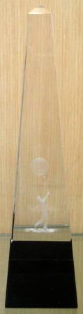 ถ้วยคริสตันcy012