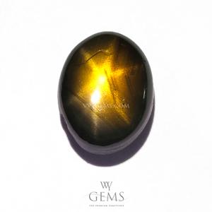 สตาร์บุษฯ (Golden Star Sapphire) 2.48 กะรัต พลอยดิบ